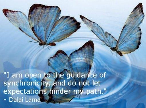 sychronicity-butterfly-dalai-lama.jpg